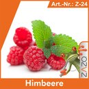ZAZO Himbeere e-Liquid 10 ml 4 mg/ml